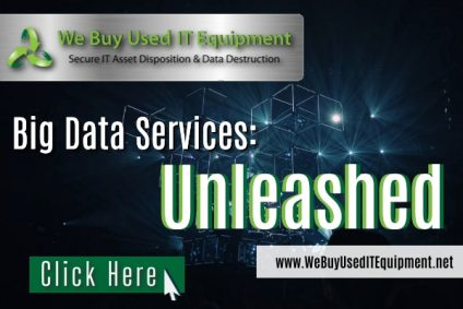 Big Data Services: Unleashed